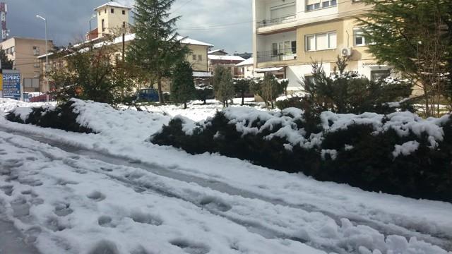 snegohridfevruari