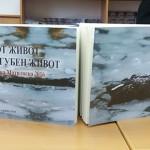 Dnevnik Matiloska