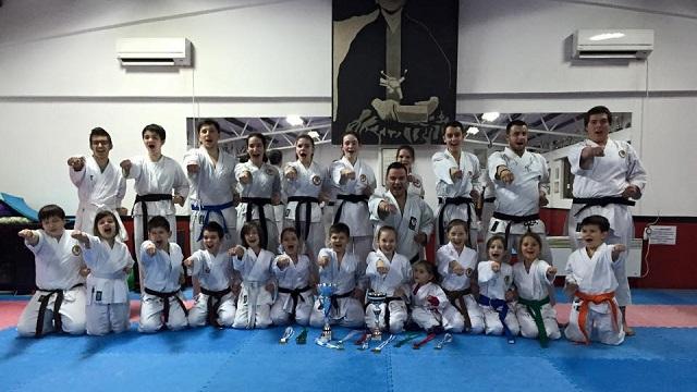 Karatedrzavno