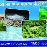 izlozba-podvodna-foto-640x340